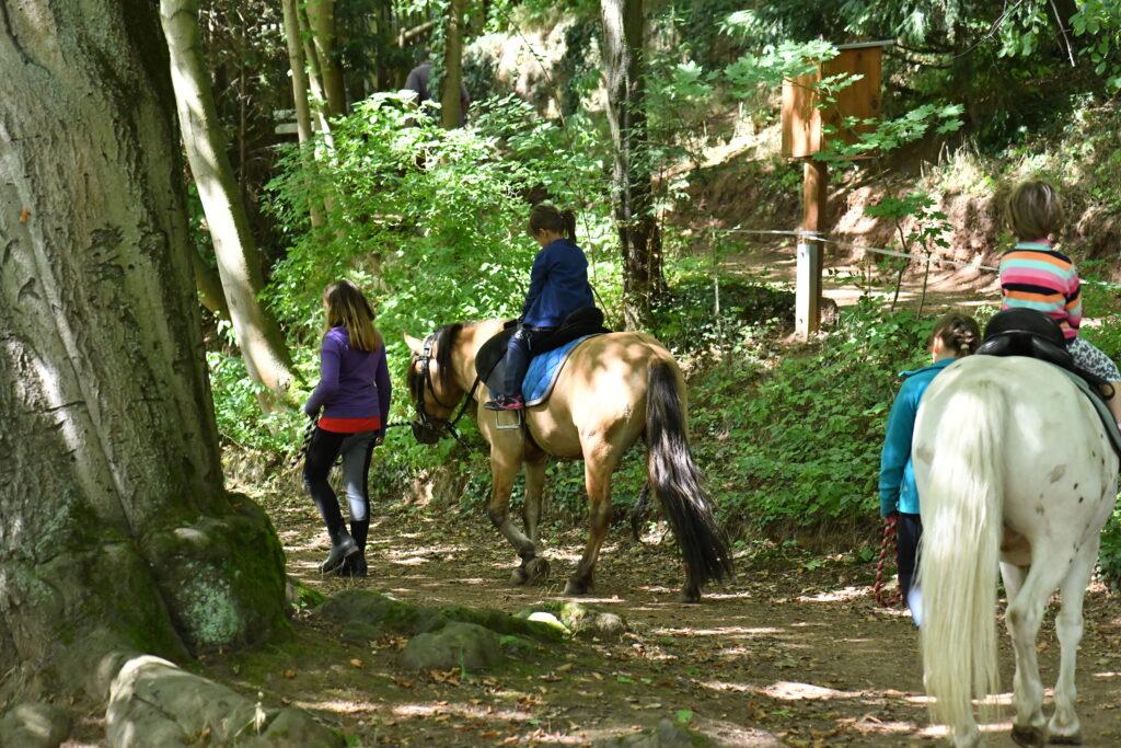 Pferdetracking für die Kleinen ist ein Muss.